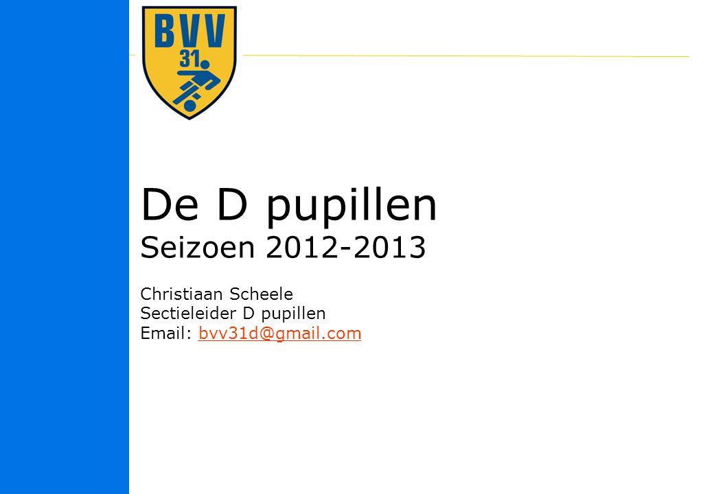 De D pupillen Seizoen 2012-2013 Christiaan Scheele