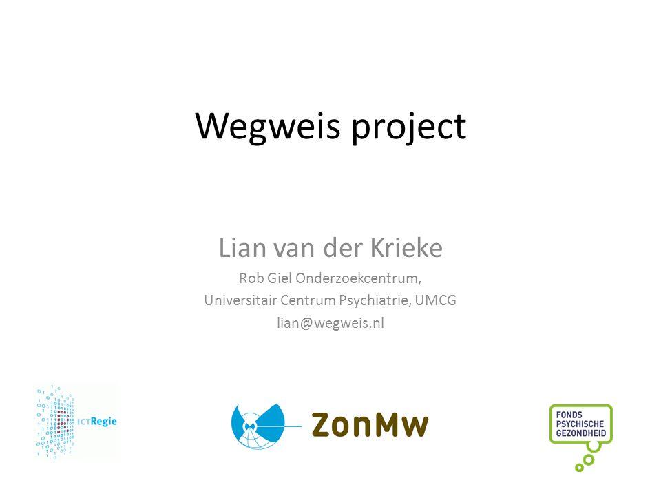 Wegweis project Lian van der Krieke Rob Giel Onderzoekcentrum,