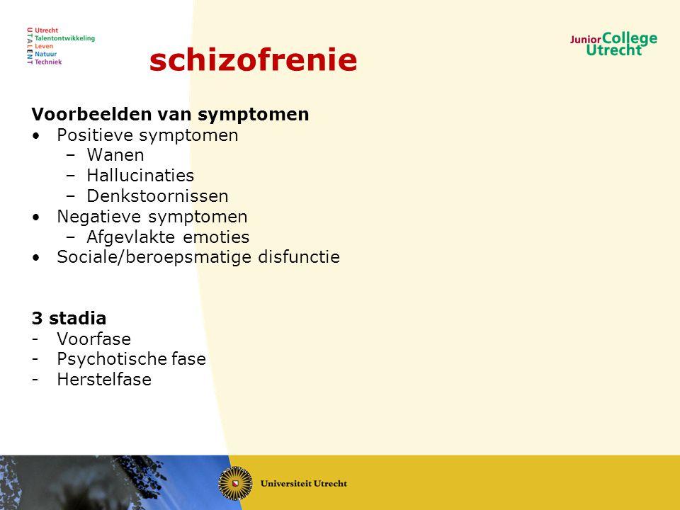 schizofrenie Voorbeelden van symptomen Positieve symptomen Wanen
