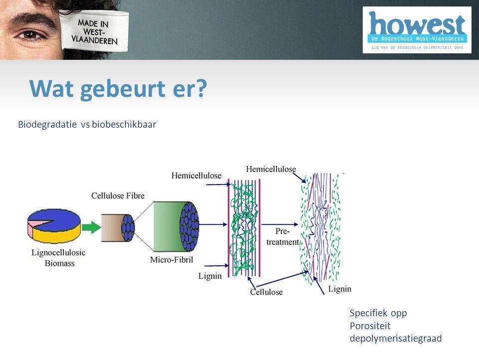 Wat gebeurt er Biodegradatie vs biobeschikbaar Specifiek opp