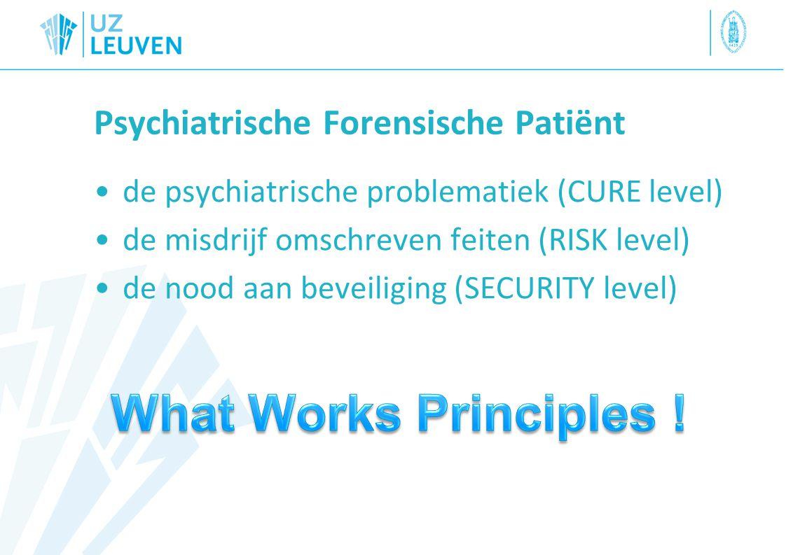 Psychiatrische Forensische Patiënt