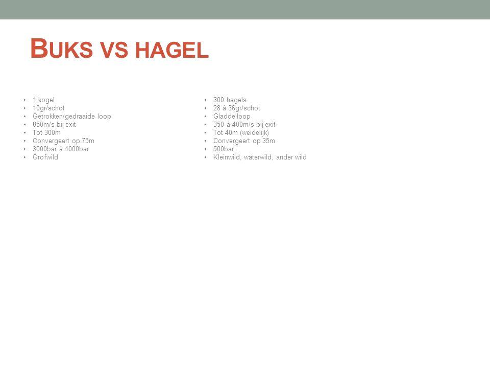 Buks vs hagel 1 kogel 10gr/schot Getrokken/gedraaide loop