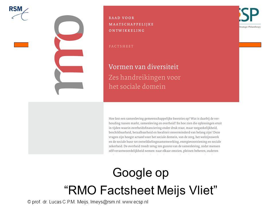 Google op RMO Factsheet Meijs Vliet