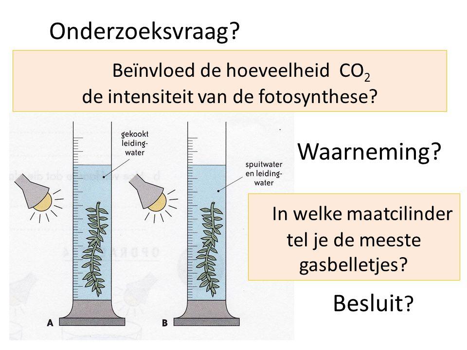Beïnvloed de hoeveelheid CO2