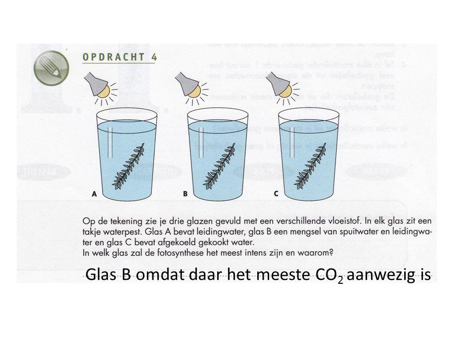 Glas B omdat daar het meeste CO2 aanwezig is