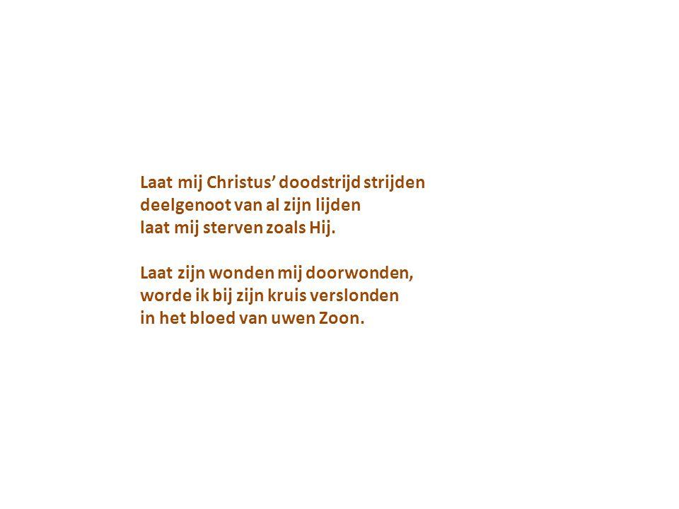 Laat mij Christus' doodstrijd strijden deelgenoot van al zijn lijden laat mij sterven zoals Hij.