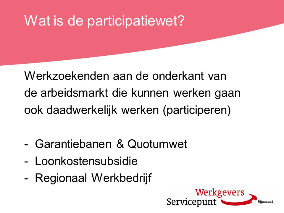 Wat is de participatiewet