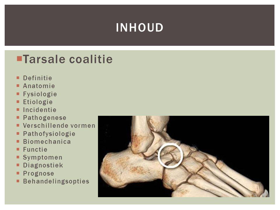 inhoud Tarsale coalitie Definitie Anatomie Fysiologie Etiologie