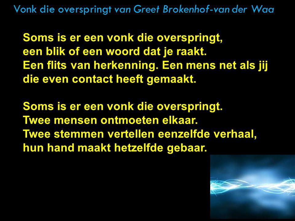 Vonk die overspringt van Greet Brokenhof-van der Waa