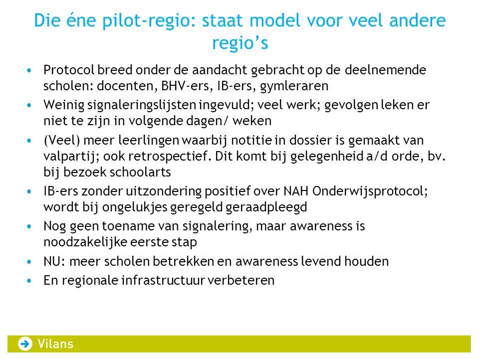 Die éne pilot-regio: staat model voor veel andere regio's