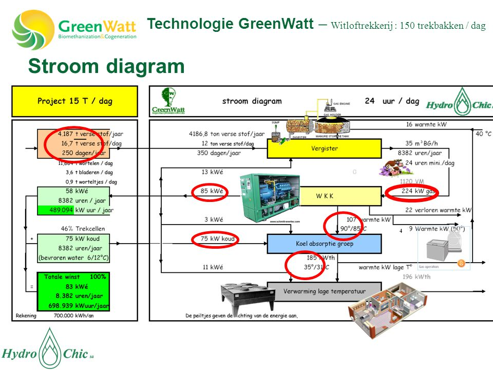 Technologie GreenWatt – Witloftrekkerij : 150 trekbakken / dag