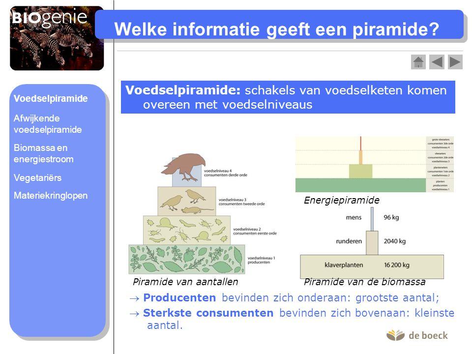 Welke informatie geeft een piramide