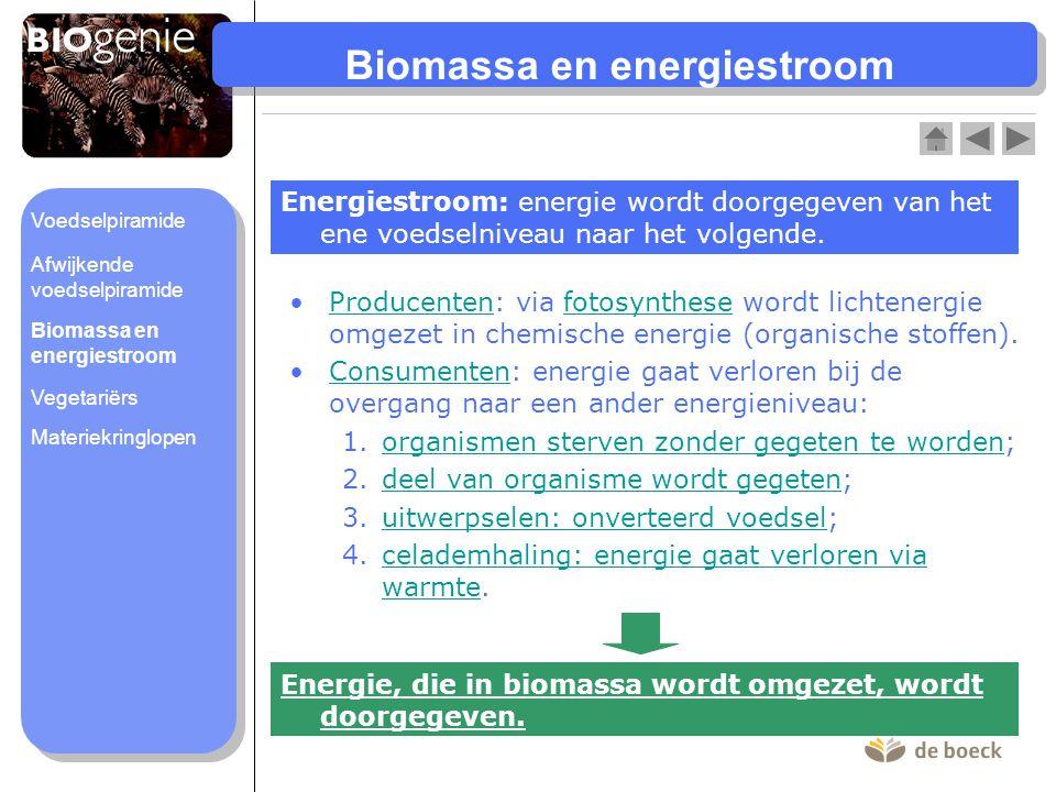 Biomassa en energiestroom