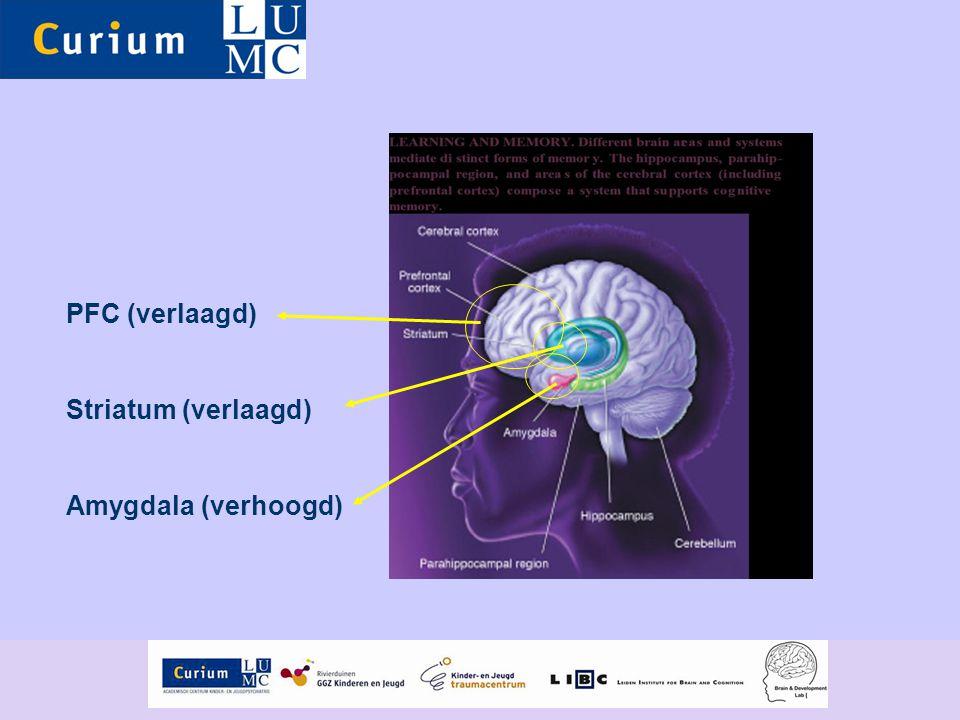 PFC (verlaagd) Striatum (verlaagd) Amygdala (verhoogd)