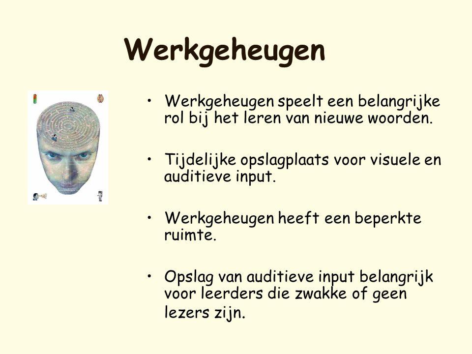 Werkgeheugen Werkgeheugen speelt een belangrijke rol bij het leren van nieuwe woorden. Tijdelijke opslagplaats voor visuele en auditieve input.