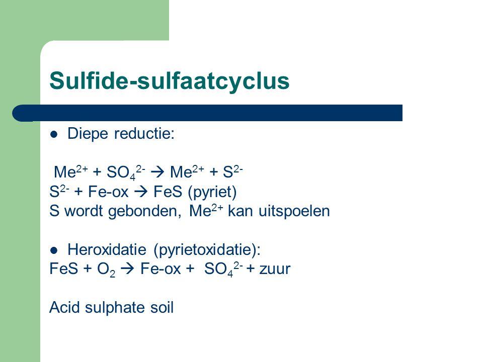 Sulfide-sulfaatcyclus