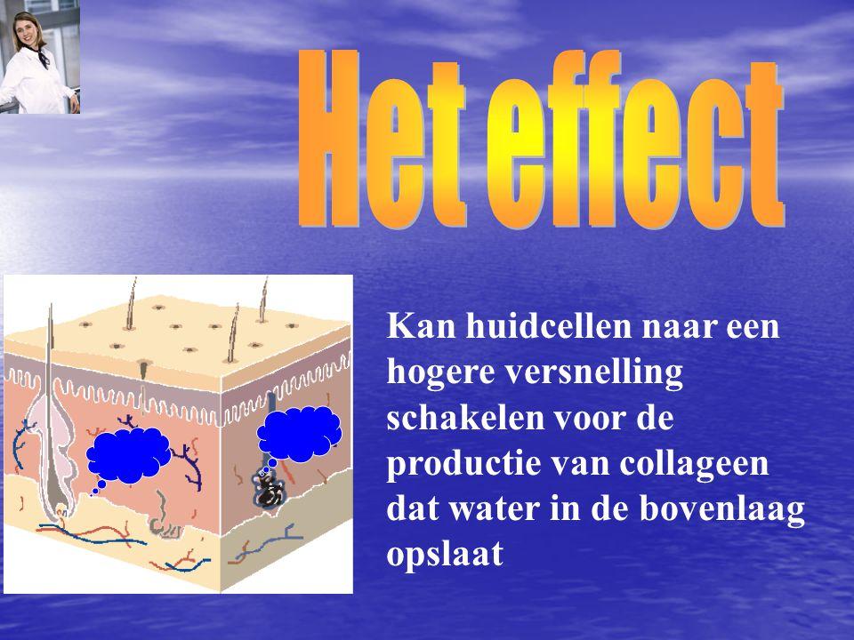 Het effect Kan huidcellen naar een hogere versnelling schakelen voor de productie van collageen dat water in de bovenlaag opslaat.