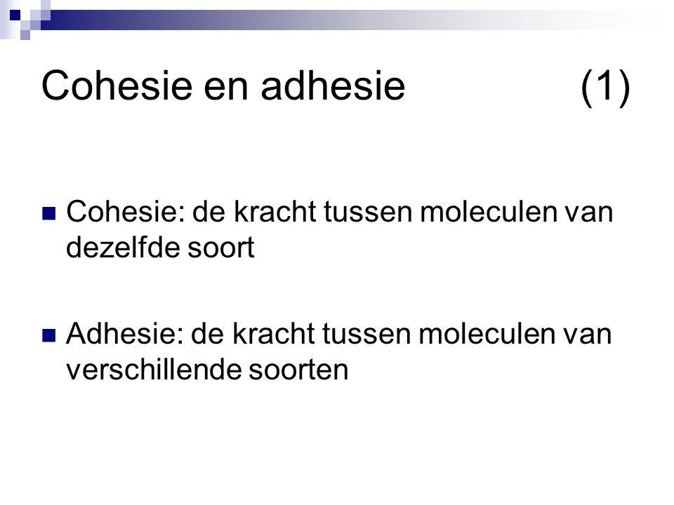 Cohesie en adhesie (1) Cohesie: de kracht tussen moleculen van dezelfde soort.
