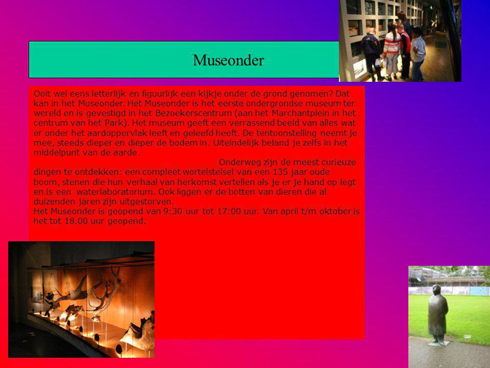 Museonder