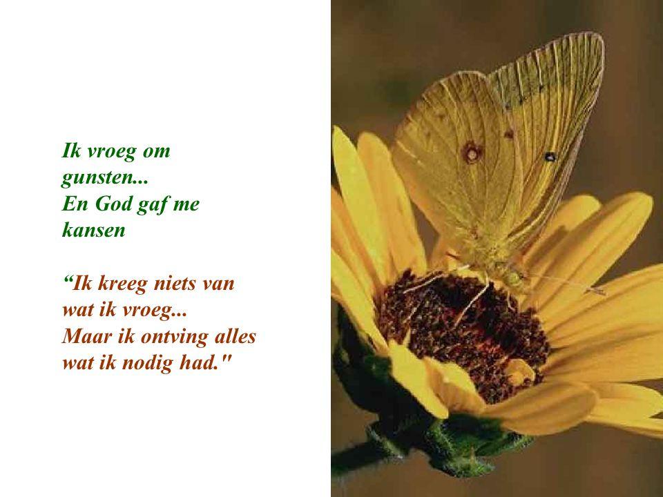 Ik vroeg om gunsten... En God gaf me kansen. Ik kreeg niets van wat ik vroeg...