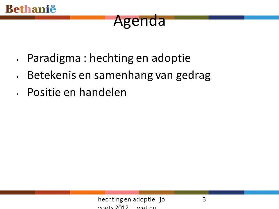 Agenda Paradigma : hechting en adoptie