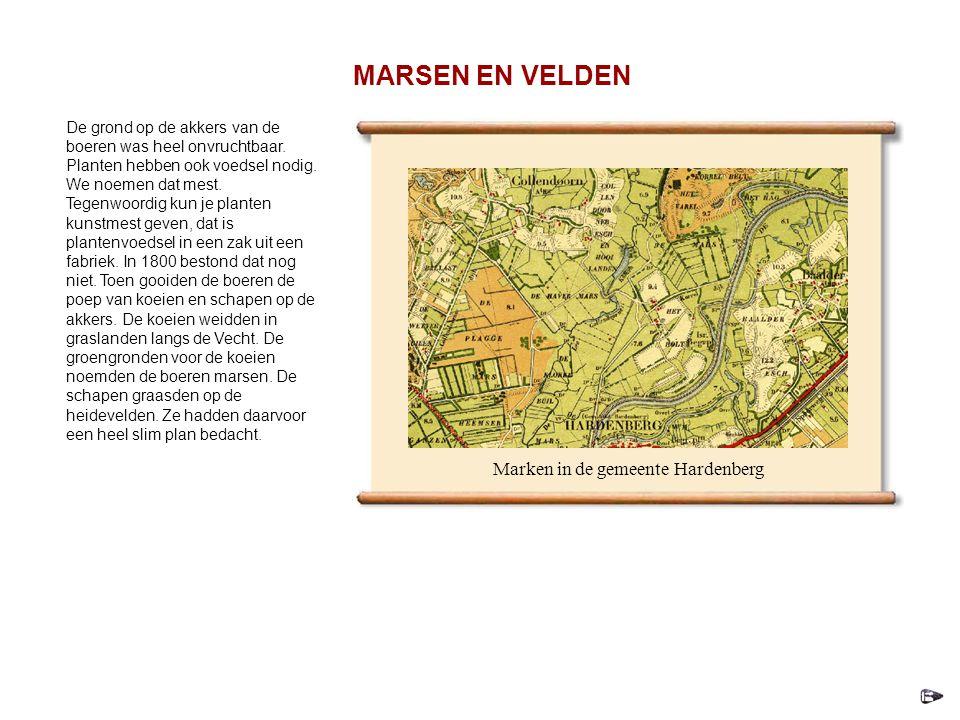 Marken in de gemeente Hardenberg