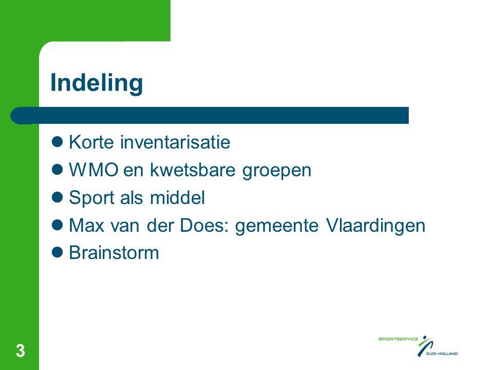 Indeling Korte inventarisatie WMO en kwetsbare groepen