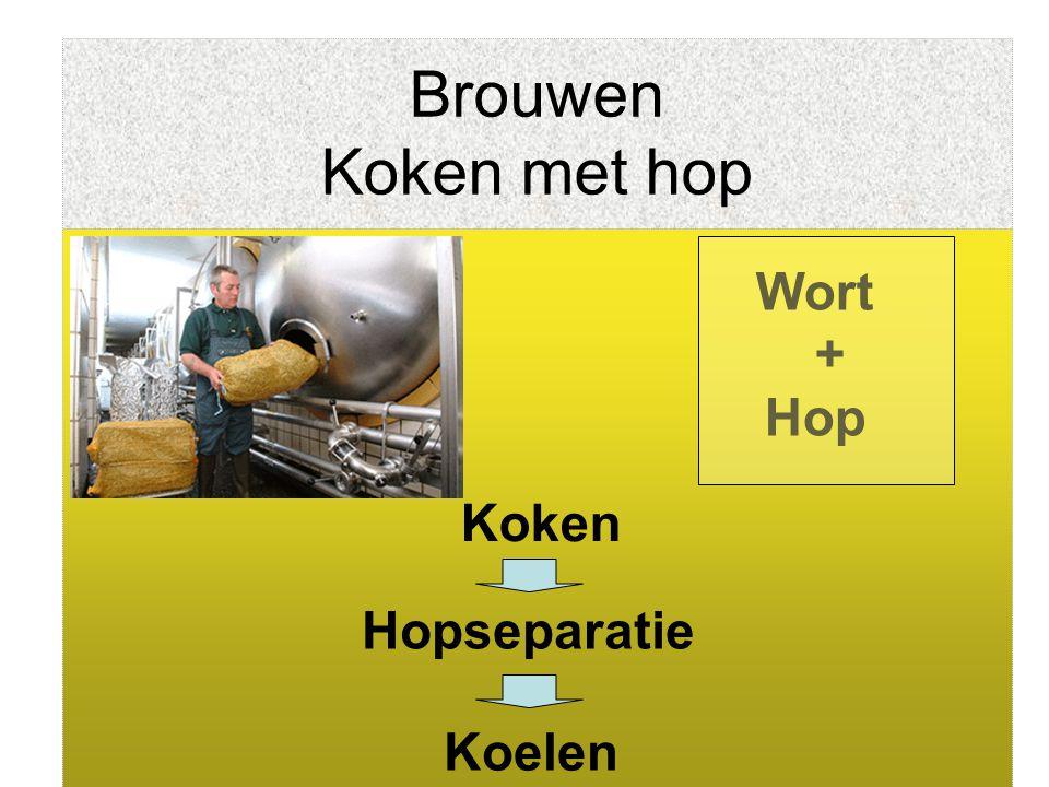 Brouwen Koken met hop Wort + Hop Koken Hopseparatie Koelen