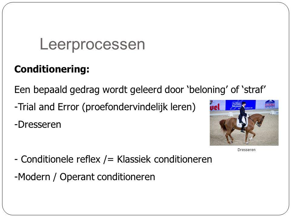 Leerprocessen Conditionering: