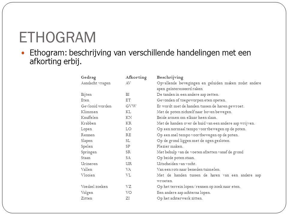 ETHOGRAM Ethogram: beschrijving van verschillende handelingen met een afkorting erbij. Gedrag. Afkorting.