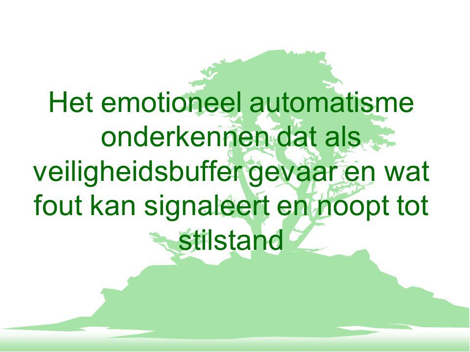 Het emotioneel automatisme onderkennen dat als veiligheidsbuffer gevaar en wat fout kan signaleert en noopt tot stilstand