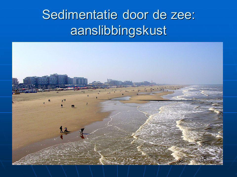 Sedimentatie door de zee: aanslibbingskust