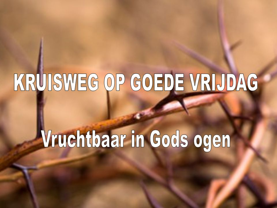 KRUISWEG OP GOEDE VRIJDAG Vruchtbaar in Gods ogen