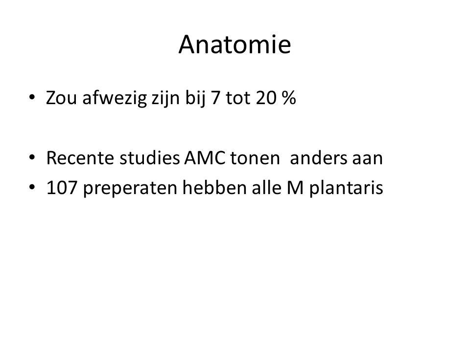 Anatomie Zou afwezig zijn bij 7 tot 20 %
