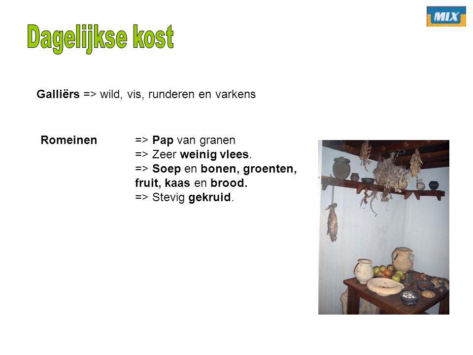 Dagelijkse kost Galliërs => wild, vis, runderen en varkens