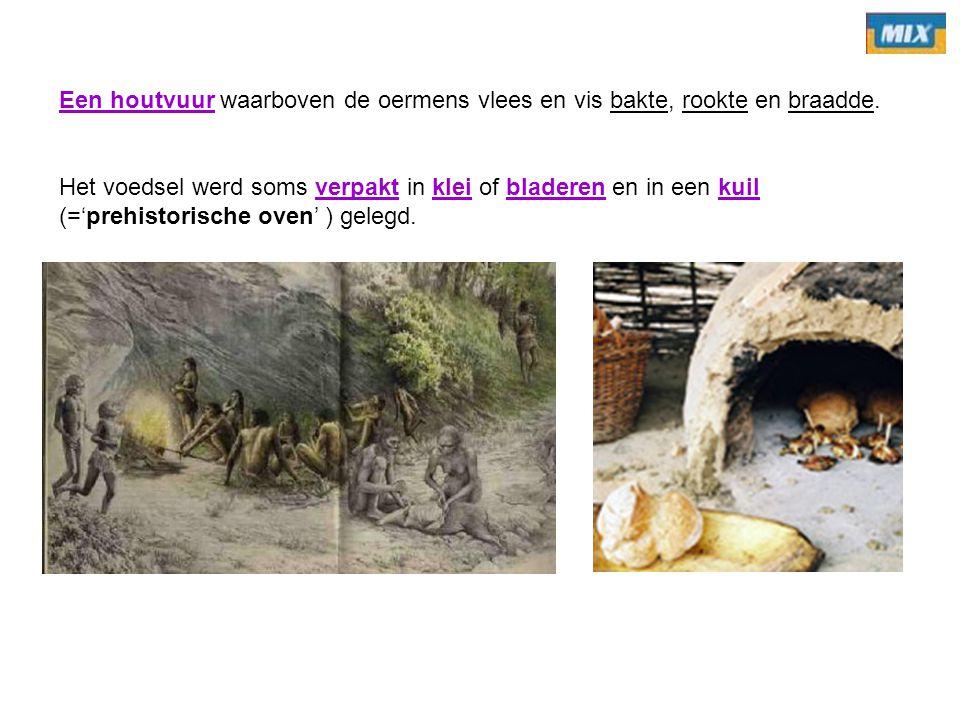 Een houtvuur waarboven de oermens vlees en vis bakte, rookte en braadde.
