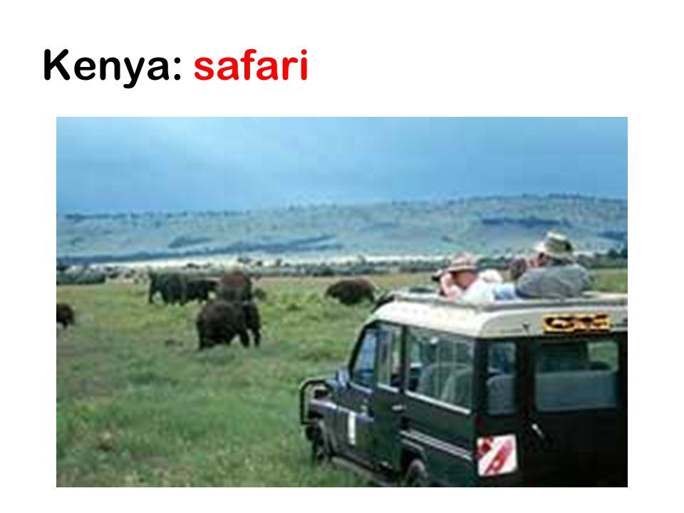 Kenya: safari