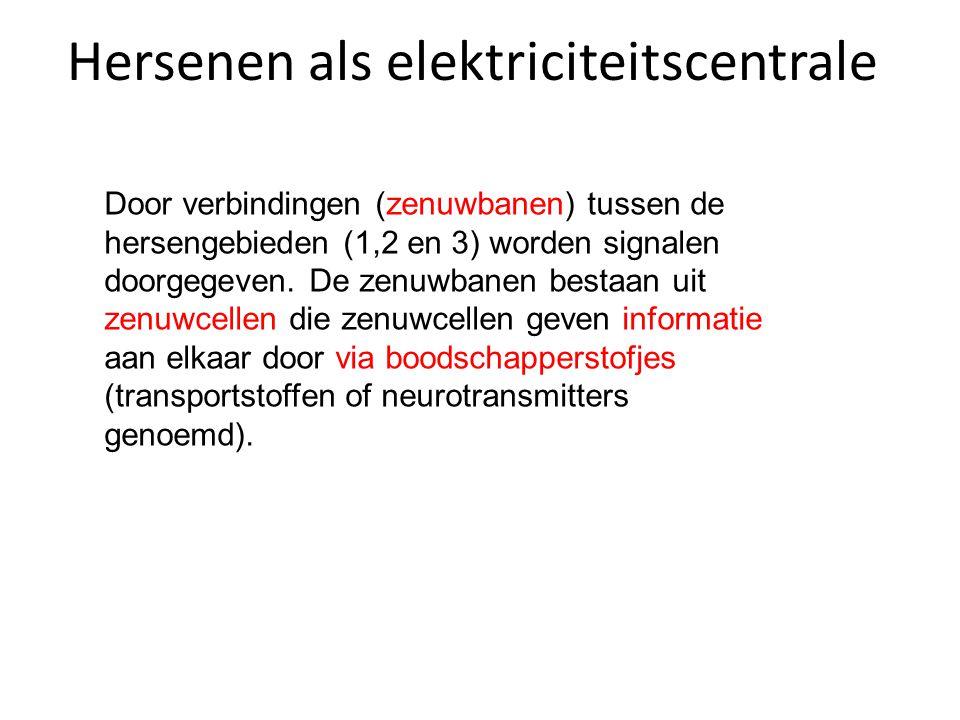 Hersenen als elektriciteitscentrale