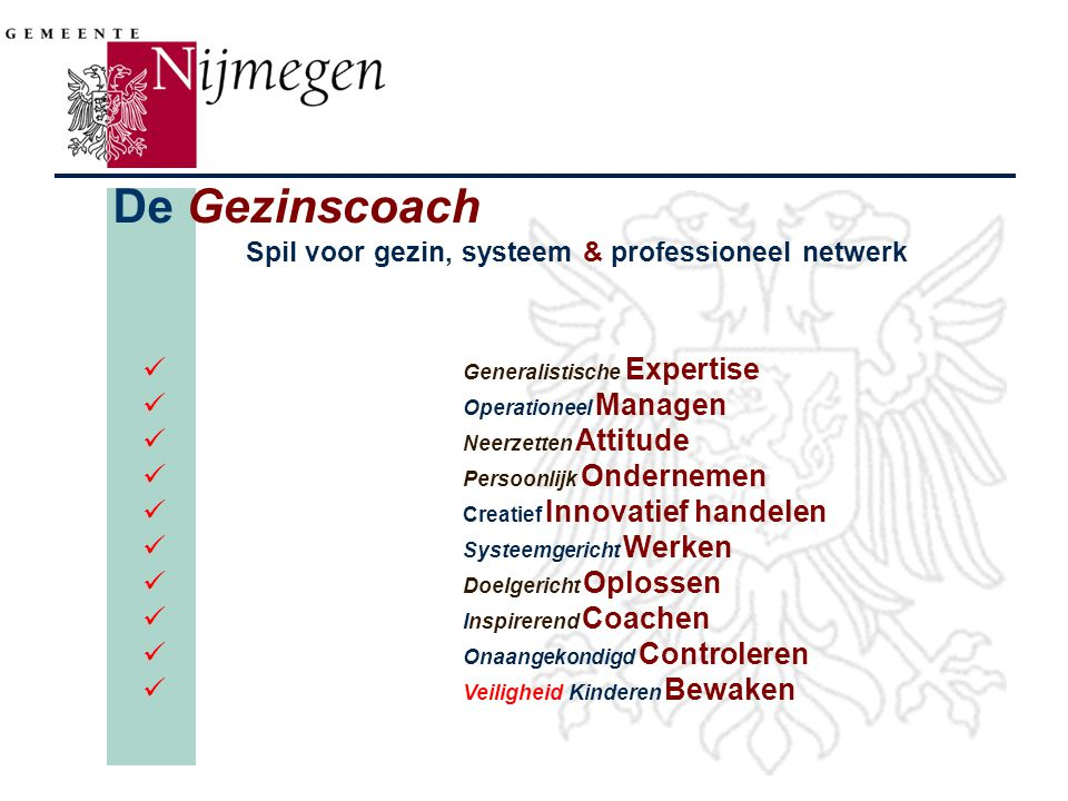De Gezinscoach Spil voor gezin, systeem & professioneel netwerk