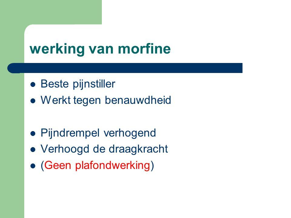 werking van morfine Beste pijnstiller Werkt tegen benauwdheid
