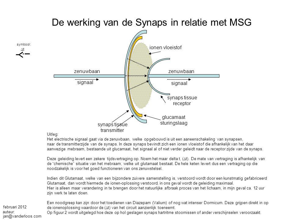 De werking van de Synaps in relatie met MSG