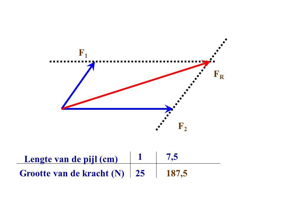 F1 FR F2 1 7,5 Lengte van de pijl (cm) Grootte van de kracht (N) 25 187,5