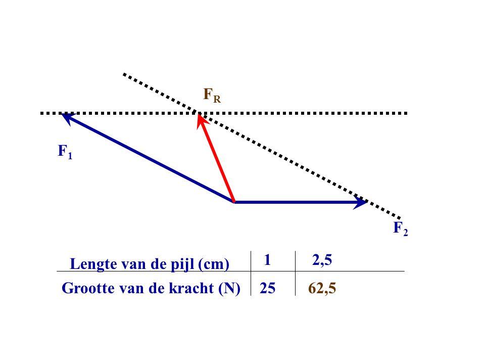 FR F1 F2 Grootte van de kracht (N) Lengte van de pijl (cm) 1 25 2,5 62,5