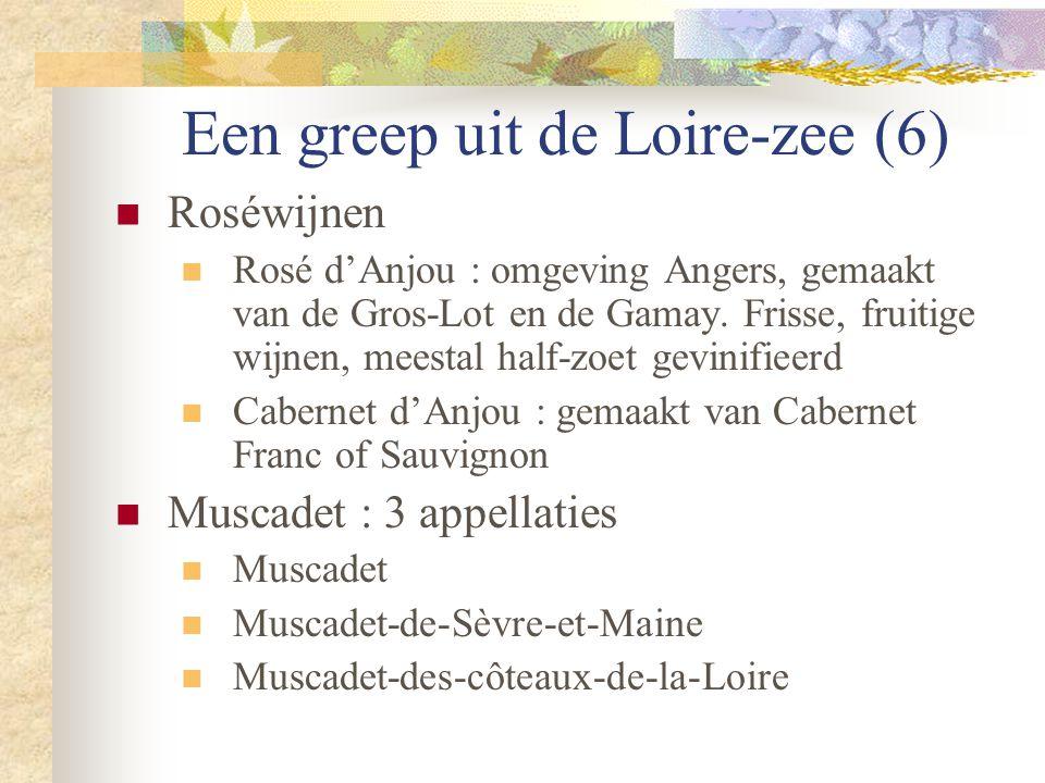 Een greep uit de Loire-zee (6)