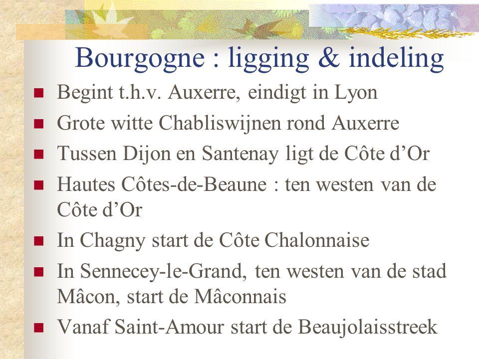 Bourgogne : ligging & indeling