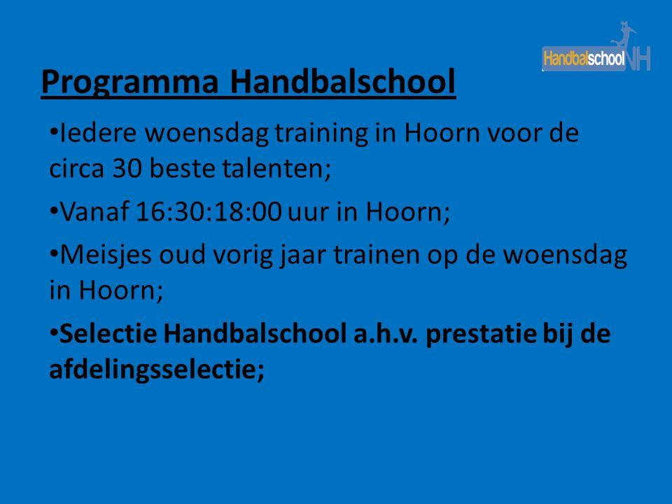 Programma Handbalschool