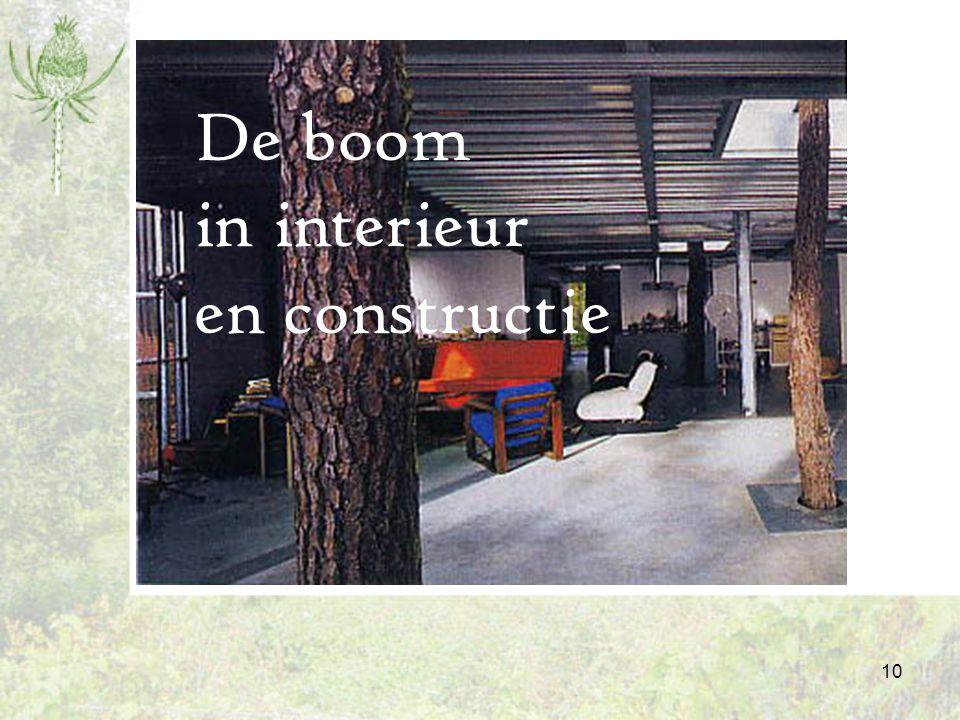 De boom in interieur en constructie