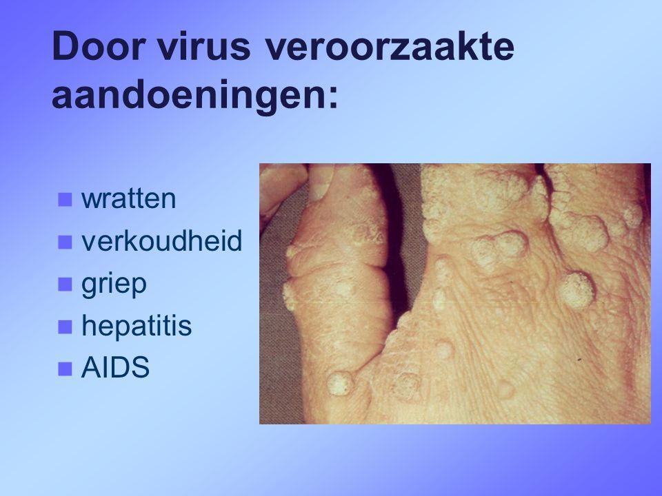Door virus veroorzaakte aandoeningen: