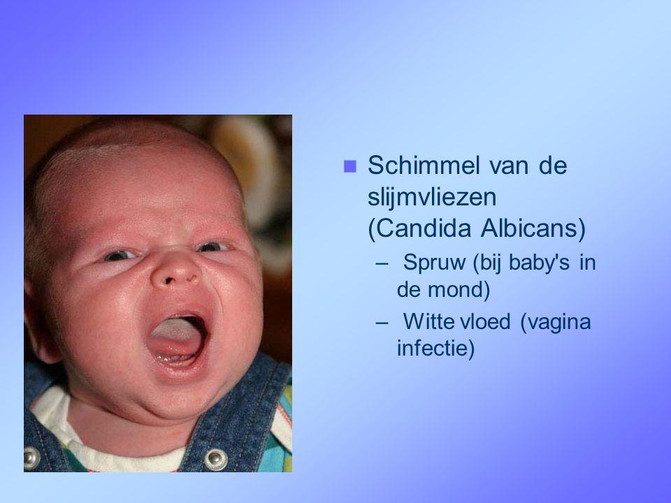 Schimmel van de slijmvliezen (Candida Albicans)