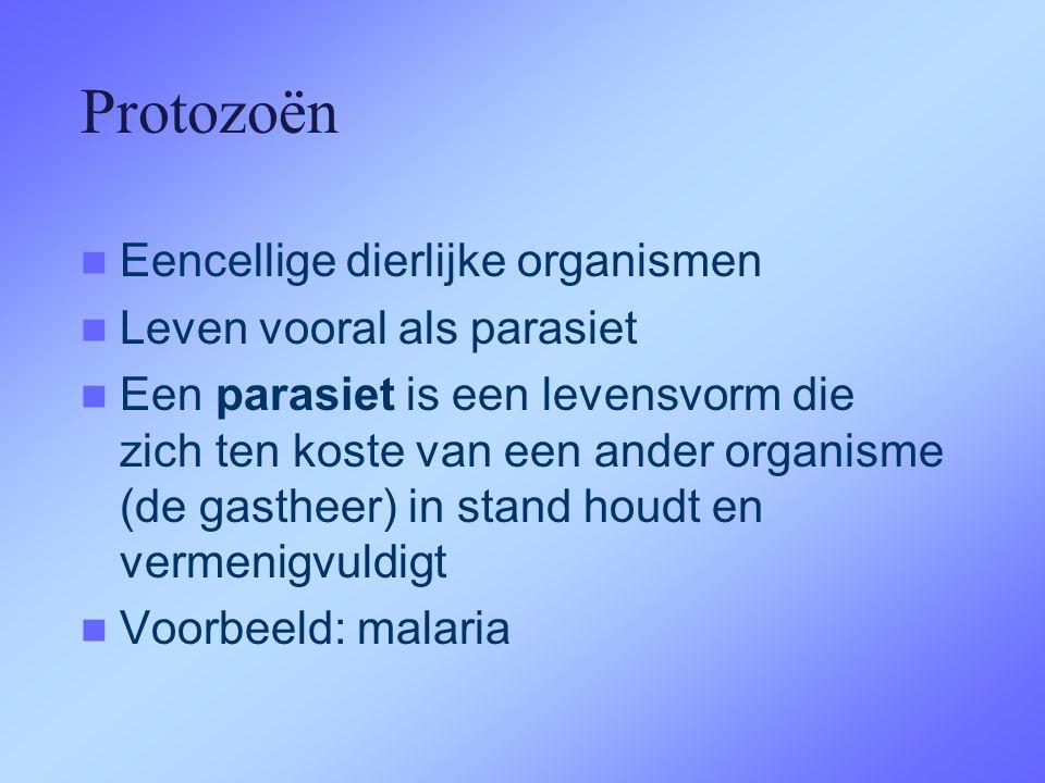 Protozoën Eencellige dierlijke organismen Leven vooral als parasiet